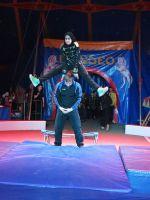 Zirkus2016-022